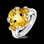Utopian ring, SO19069-AGCICI_V