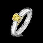 Engagement Alliance, SL16007-IGD025/FYVS2_V