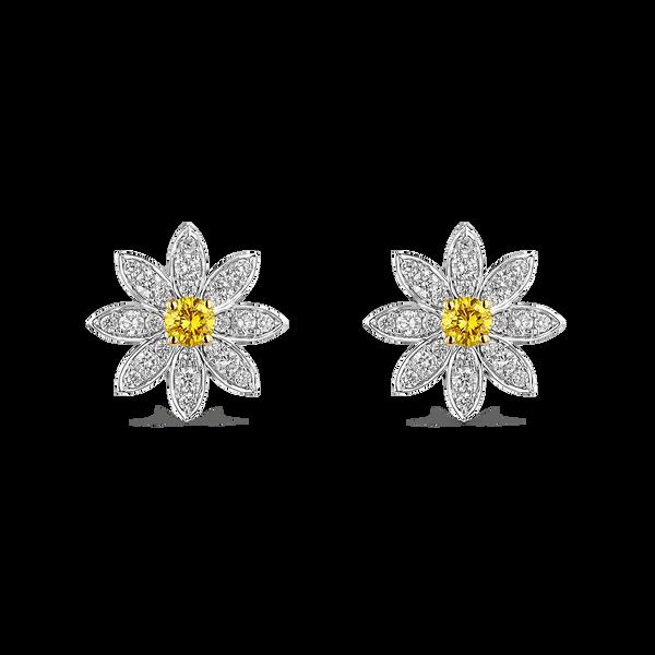 New Bern Earrings, PE20062-OBOADAD_V